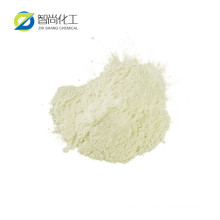 Factory Supply Turmeric Root Extract 95% Curcumin Powder CAS 458-37-7