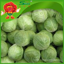 Китайская капуста с зеленой капустой