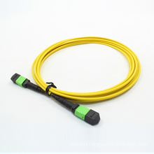 MTP/MPO Singlemode 24cores Fiber Optic Patchcord