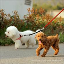 Atacado em dois sentidos duplo Nylon Dog Leash trela cão durável e colar para 2 cães