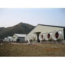 Coffre en acier à coque en acier pour personnalisé (PCH-13)