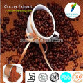 Натуральный экстракт какао 10% освежает мозг