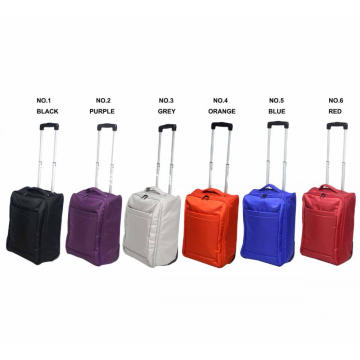 Carry Ultra Light Foldable Trolley Case