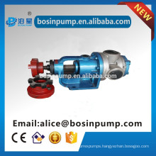 Frequency conversion Electric Oil Gear Pump for paint, medicine, foodstuff