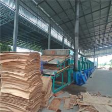 Woodworking Continuous Veneer Dryer Machine for Sale