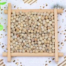 Nuevos cultivos de pimiento blanco, pimienta triturada, polvo de Peper