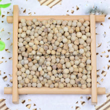 New Crop White Pepper, Pepper Crushed, Peper Powder