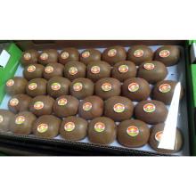 Kiwis sucré frais pour l'exportation