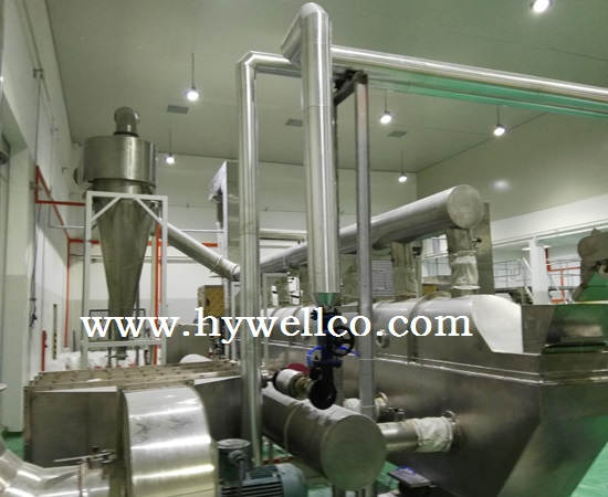 Seasoner Granules Drying Machine