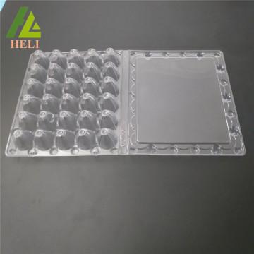 30 Holes Plastic Quail Eggs Packaging Tray