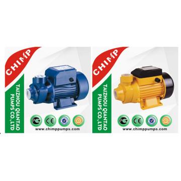 Pompe à eau Qb70 Vortex Garden Use