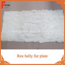 Plaque de ventre de lapin Rex