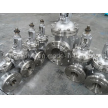 Stainless Steel 304 /316 Flanged Gate Valve
