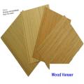 Folheado de madeira projetado folheado de madeira em relevo decorativo