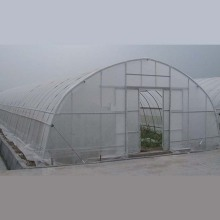 Low Cost for Plastic Film Greenhouse Single Span Tunnel Film Greenhouse supply to Syrian Arab Republic Wholesale