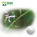 Bột chiết xuất Andrographis paniculata