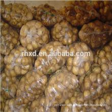 Sweet potato fresh at price of large russet potato