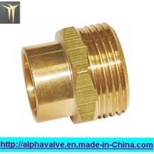 Brass Fitting/Brass Nipple (a. 0257)