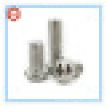 Ss304 Pan Head Screw / Pan Head Phillips Screws