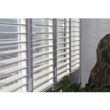 fenêtre à obturateur en aluminium