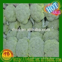 wholesale fresh broccoli