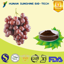Hot sale Grape Seed Extract (High ORAC Value)