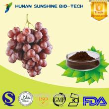 Экстракт горячие продажа семян винограда (высокое значение orac)
