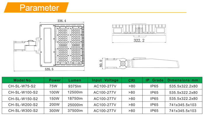 Type III Led Street Light Retrofit
