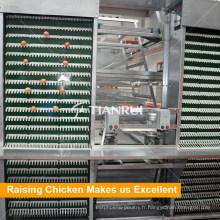 Machine automatique de couche d'oeufs de poulet de vente chaude de prix bas