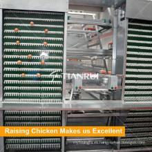 Máquina automática de la capa del huevo del pollo del precio bajo vendedor caliente