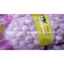 New Garlic 5.5cm 10kg Mesh Bag