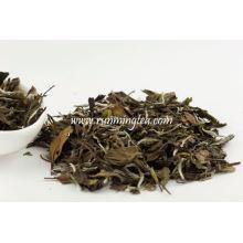 Shou Mei White Label Tea