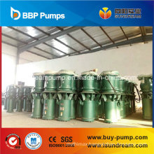 Submersible Axial Flow Pump (propeller)