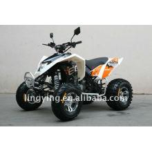 Aprobación de 300cc cuatriciclos moto/atv EEC