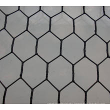 Hexagonal Wire Mesh for Temporary Fence