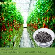 Biochar Organic fertilizer for celery and other vegatables