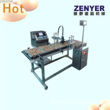 stainless steel automatic egg coding machine