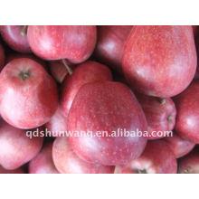 Vermelho delicioso maçã huaniu