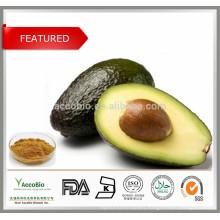 High Quality Alligator Pear Extract 4:1 Powder