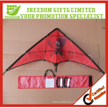Customized Large Size Naish Kites