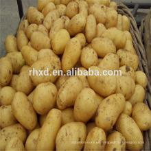 Patata fresca a granel con precios bajos