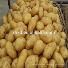 Batata a granel fresca com preços baixos