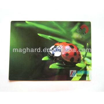 Украшения магнит плоский туристический насекомое холодильник магнит
