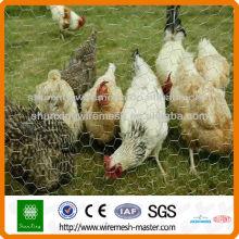 Red de pollo pesadamente hexagonal