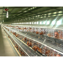 Hotsale Automatic Design Layer Chicken Battery Cages para Africa Poultry Farm