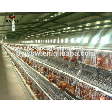 Cages automatiques de batterie de poulet de couche de conception de Hotsale pour la ferme de volaille d'Afrique