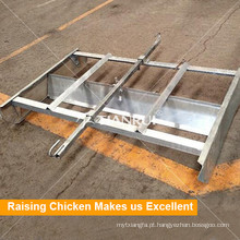 Estrume automático da galinha do porto de cultivo que remove o sistema para o equipamento das aves domésticas