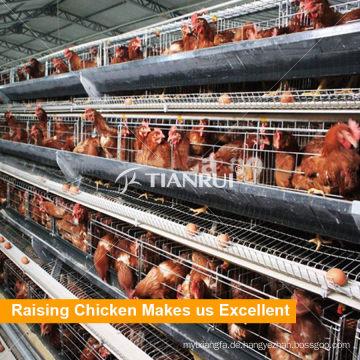 Tianrui Eine Art automatischer Hühnerschichtkäfig