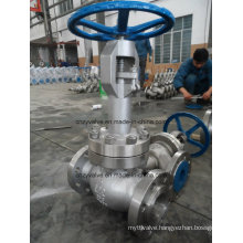 Low Temperature Extended Stem Stainless Steel Gate Valve