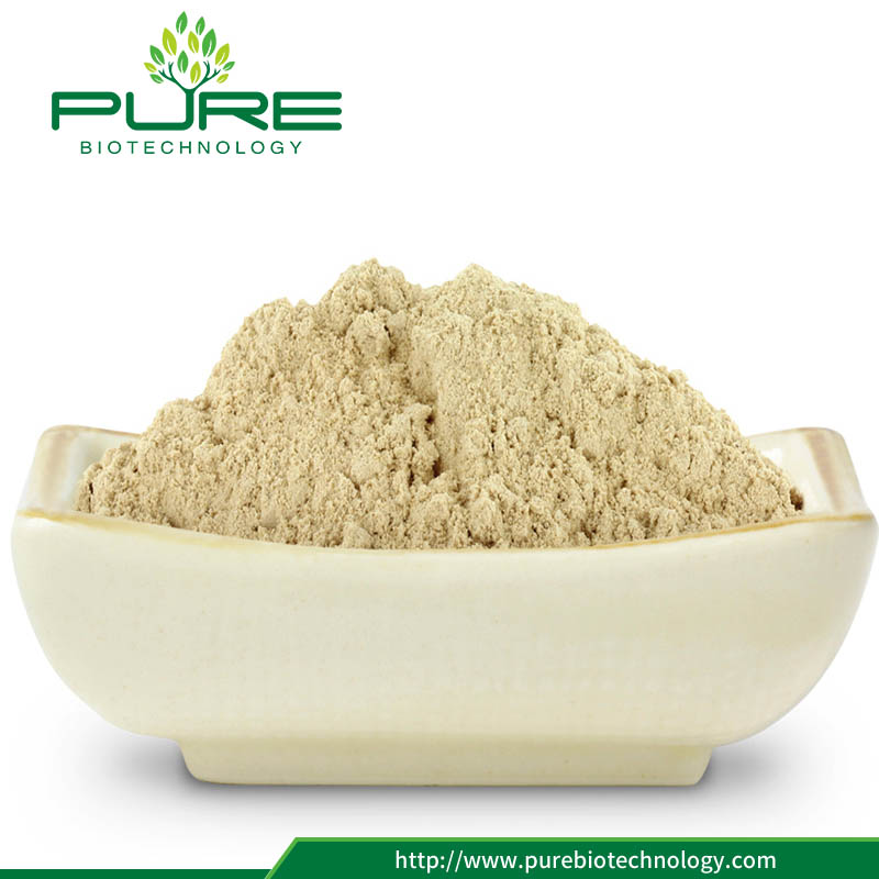 panax ginseng powder tablets or capsules